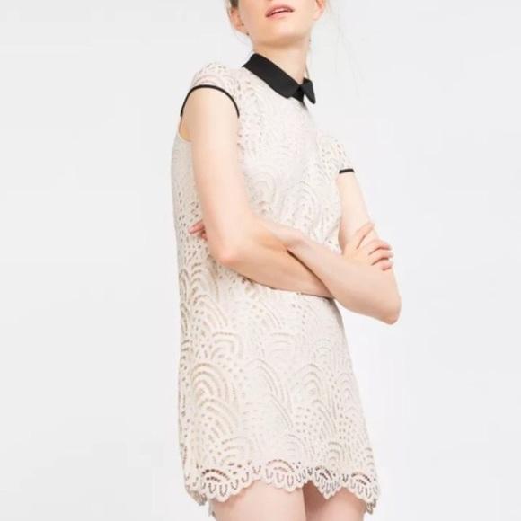 85f0b960b361 Zara Cream Off White Lace Dress ✨NWT